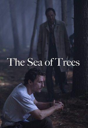 scena z filmu morze drzew Matthew McConaughey
